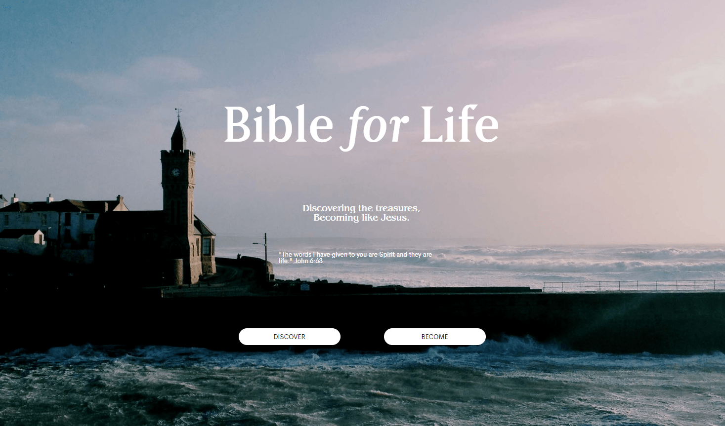 Bible for Life