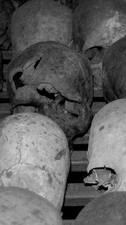 Genocide memorial skulls